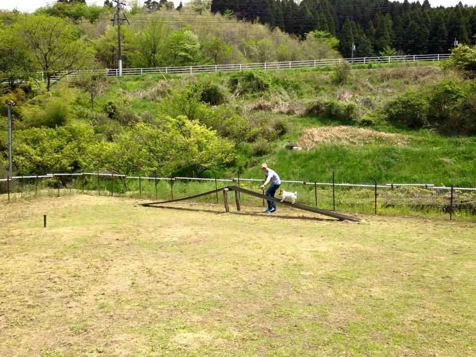 Minshuku Mizuwakemura