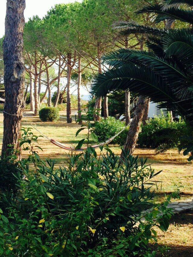 Il Giardino di Sabbia Hotel (Lacona): Prezzi e recensioni