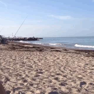 Campeggio Rifugio del Mare