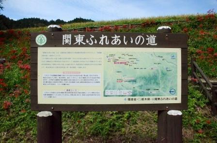 Minozawa Higanbana Park