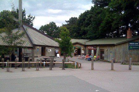 Delamere Cafe