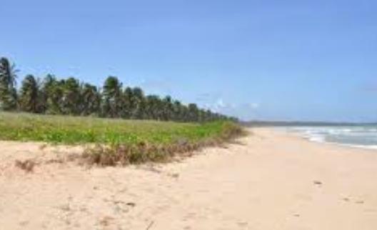 Pituba Beach