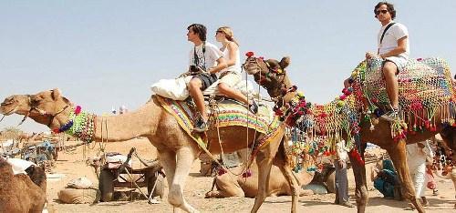 Visit To India Tours - Day Tours
