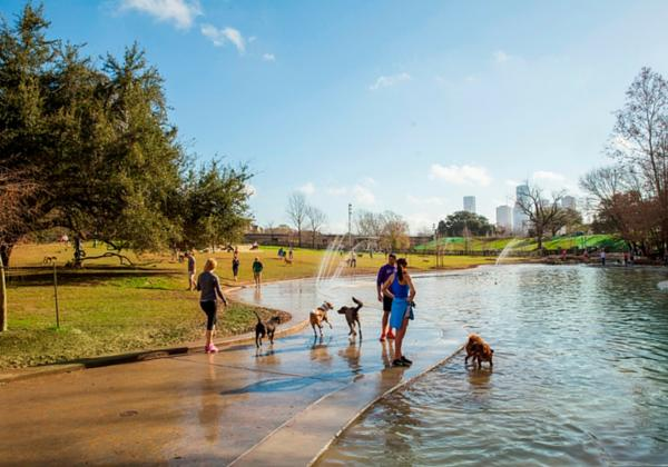 Buffalo Bayou Dog Park, at Buffalo Bayou Park