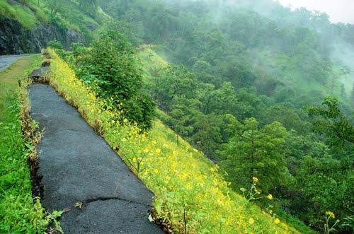 Suryamal Peak