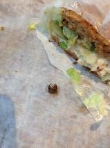 Potbelly Sandwich Works - Minneapolis