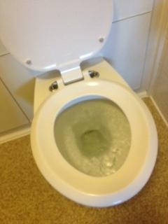 Blocked Toilet - mmm