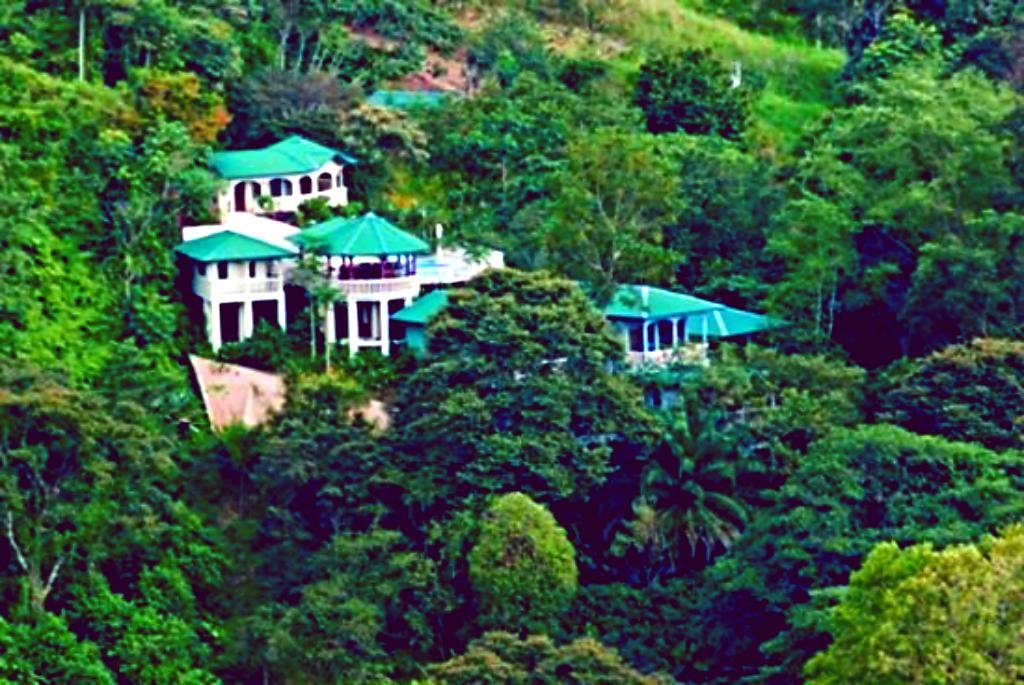 The Mango Tree Villas and Spa