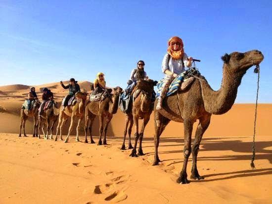 Sahara Explore