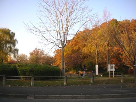 Sakuradai Park