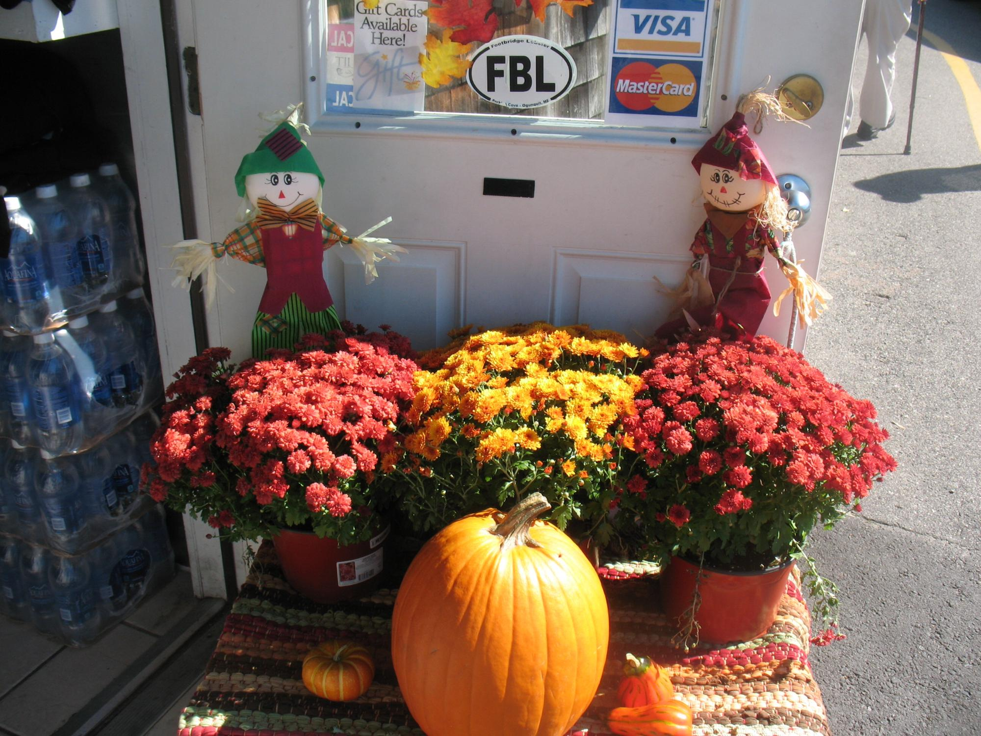 Halloween at Perkins Cove