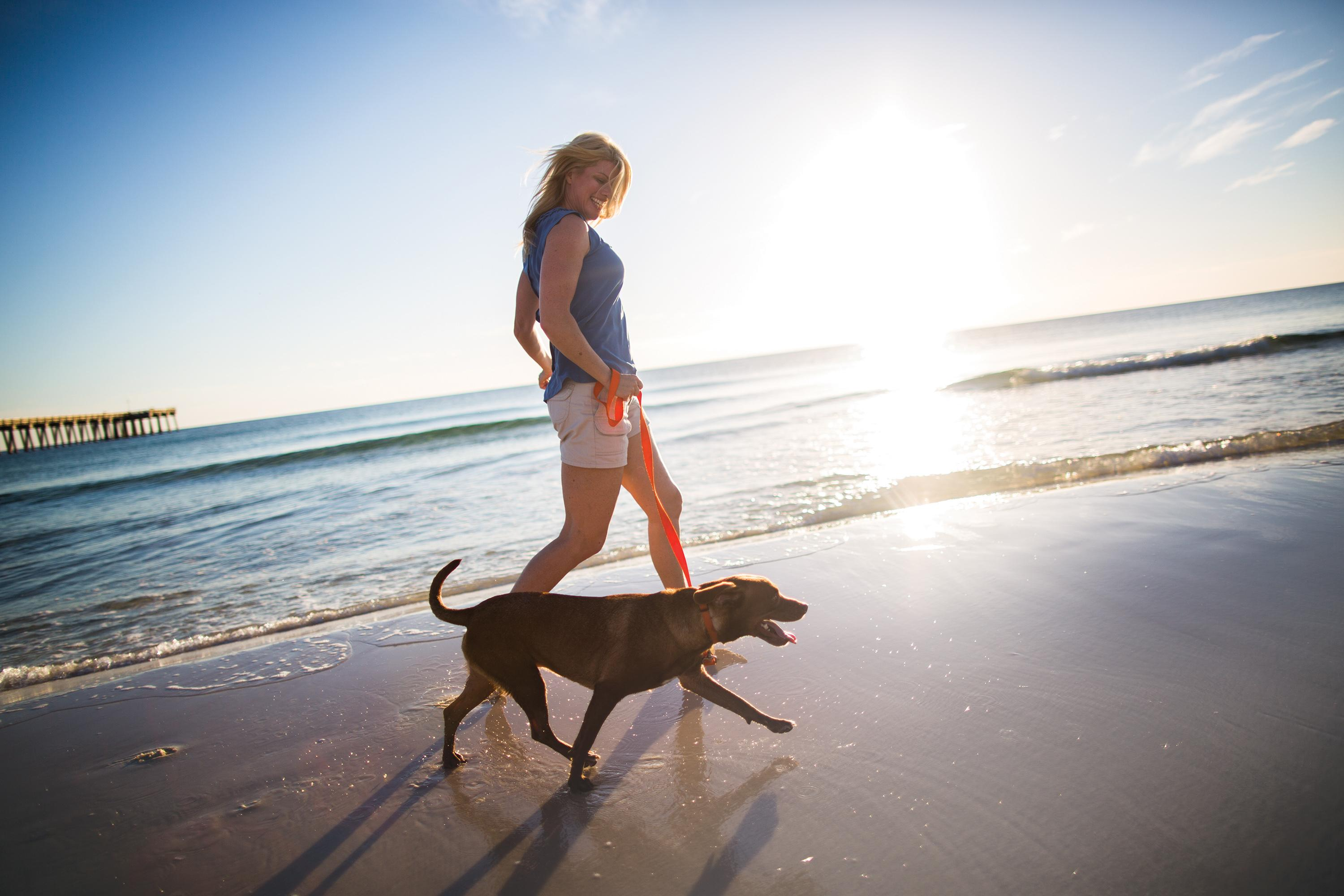 There's fun for all in Panama City Beach - even your favorite furry friend!