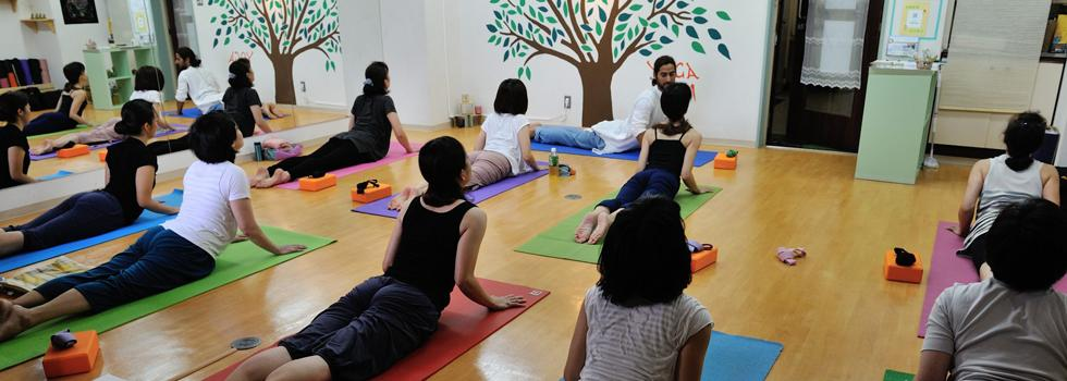 Yoga Vini Osaka - Day Lesson