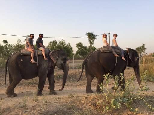 大象奇迹观光农场