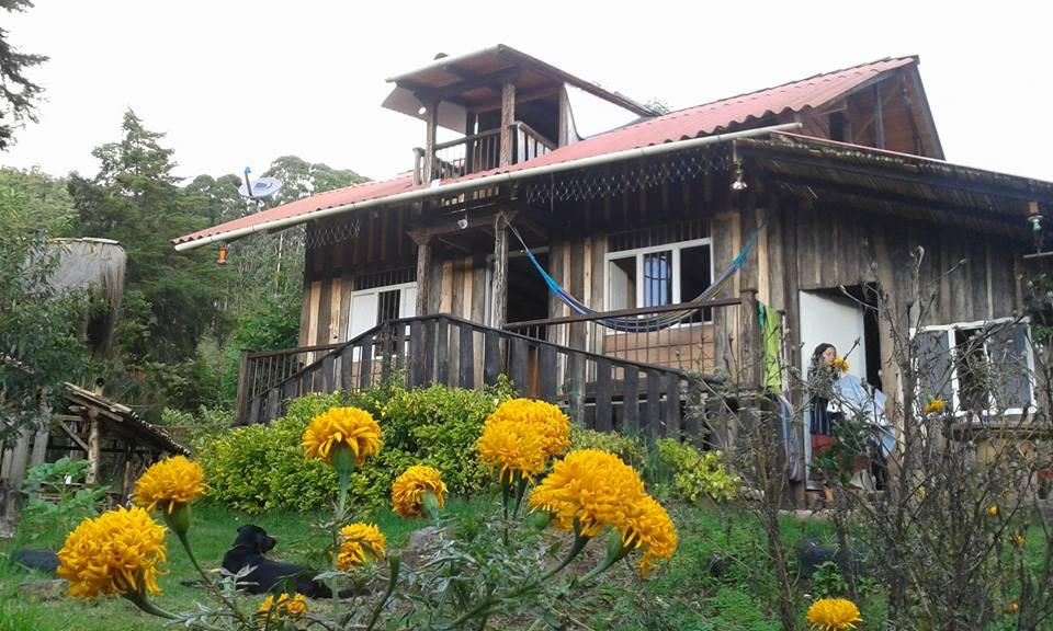 Hostal Selva y Cafe