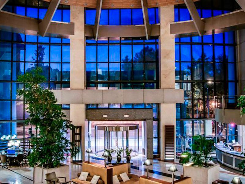 hotel mirasierra suite madrid: