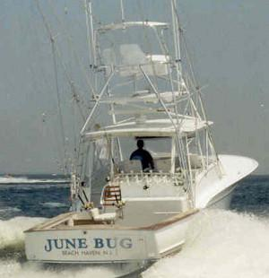 June Bug Sportfishing