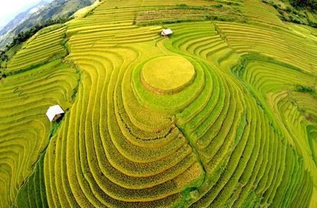 SVietnam Tourism