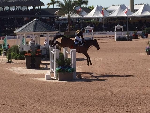 The Palm Beach International Equestrian Center Wellington All - 12 equestrian places in the us
