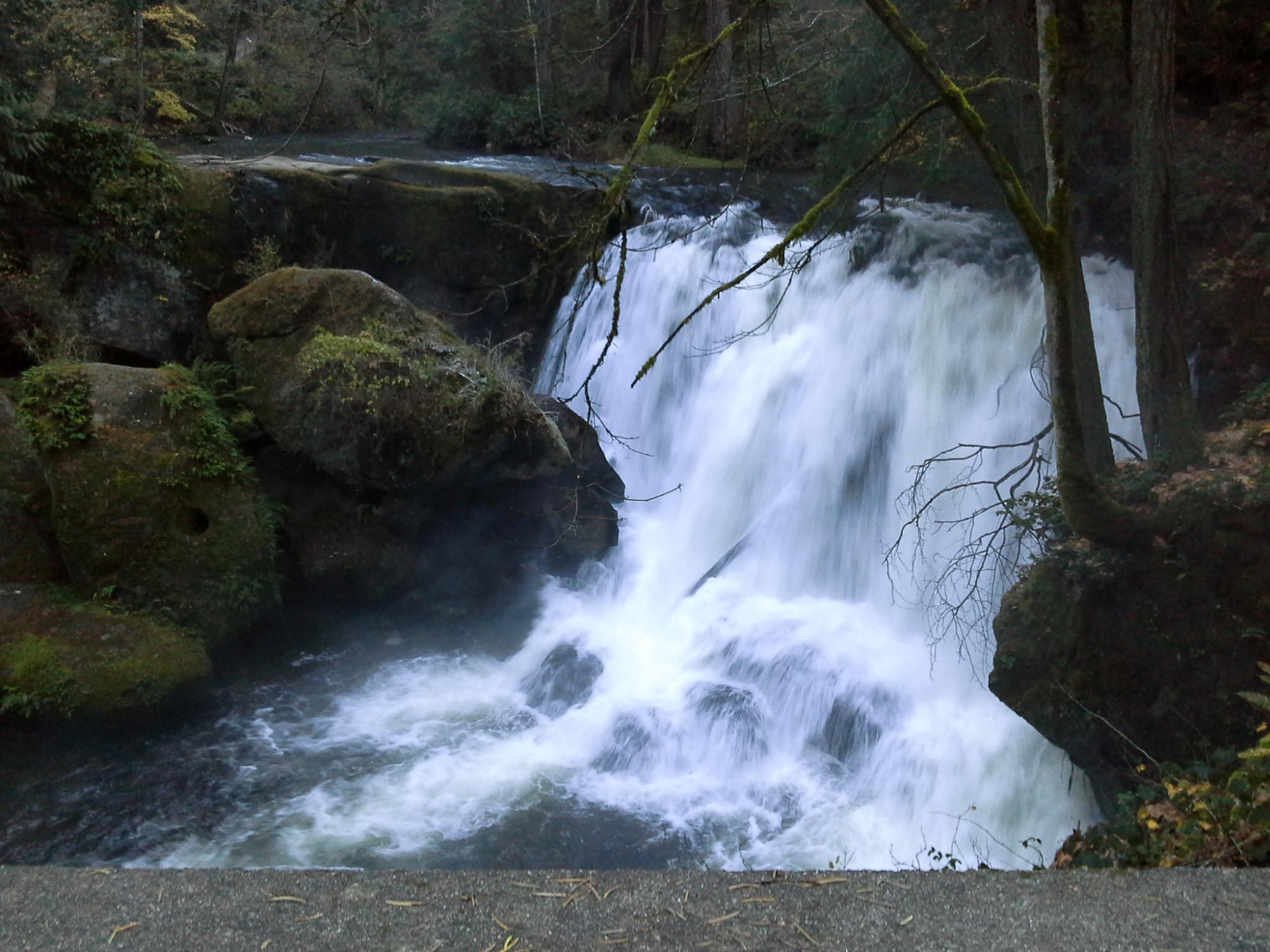 Whatcom Falls  is a nice close view