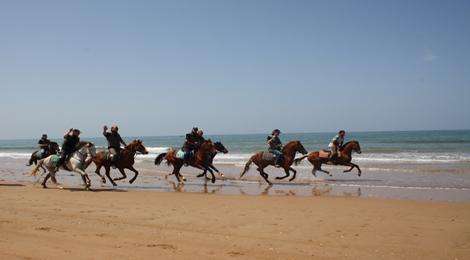 Horse Riding in Agadir