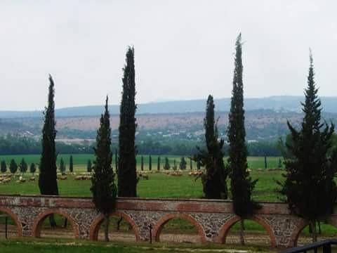Rancho La Hondonada