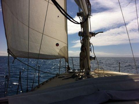 Casual Fare Sailing Charters Magnetic Island