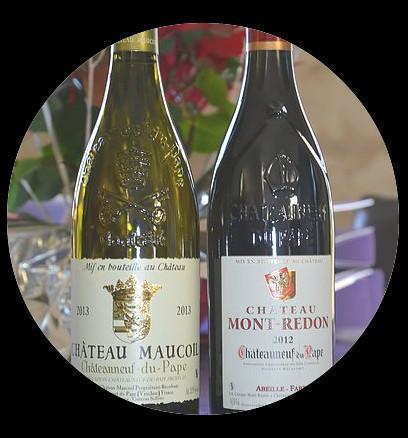 Heli Wine Tour Avignon