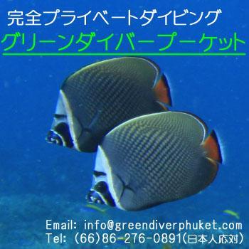 Green Diver Phuket