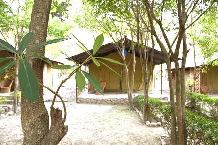 Mahaseer Fishing Camps