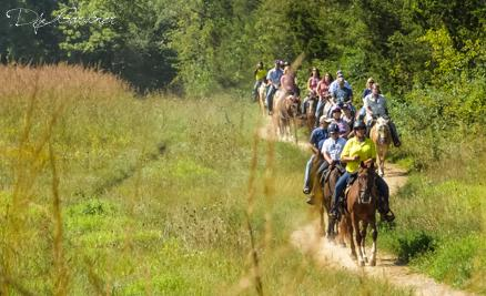 Confederate Trails of Gettysburg