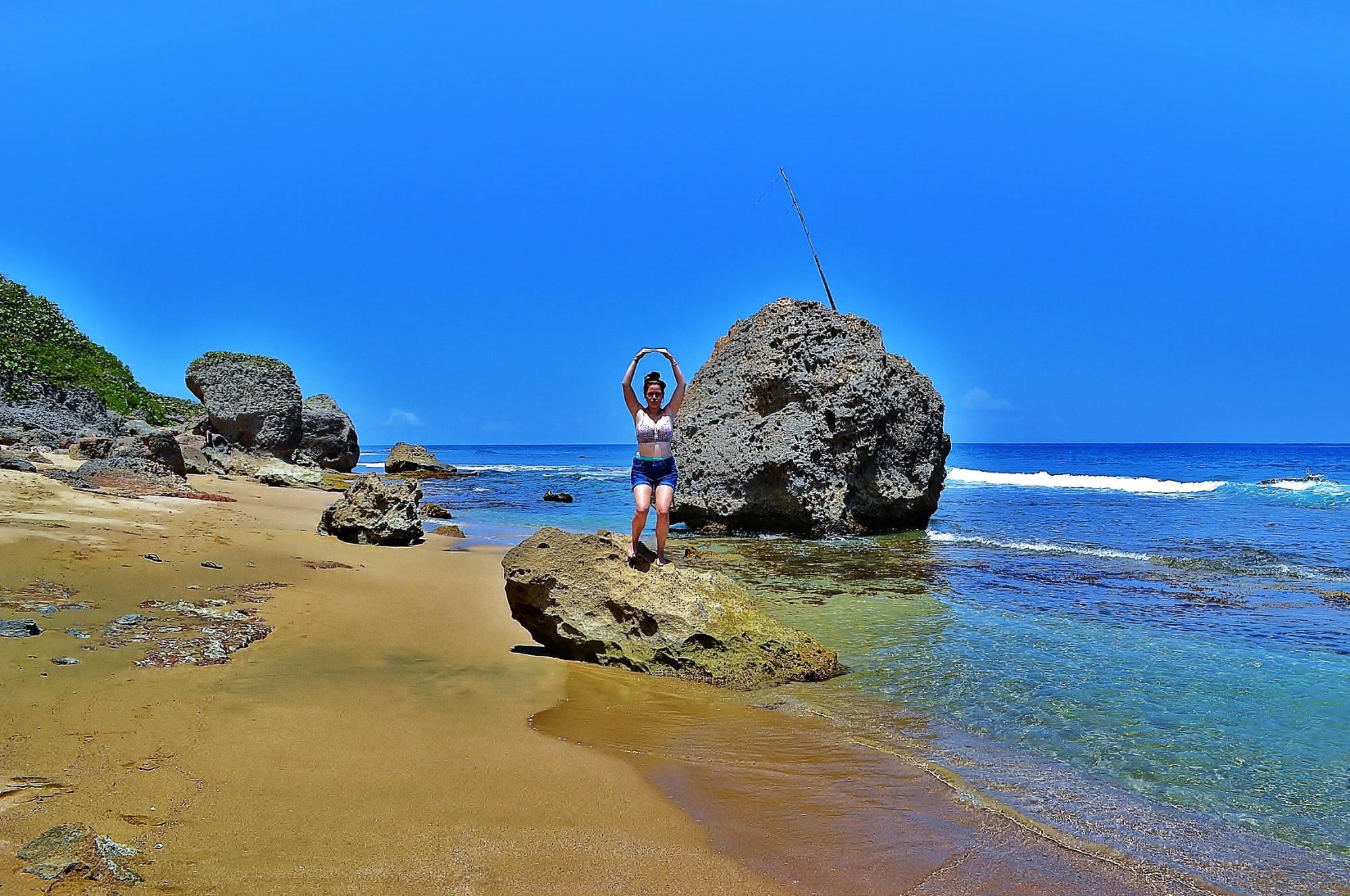 Survival Beach  Parte de la materia!!!