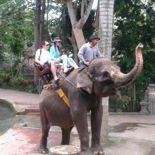 Bima Sakti Bali - Day Tours