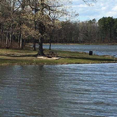Miller Community Lake