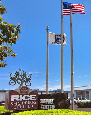 Rice Shopping Center