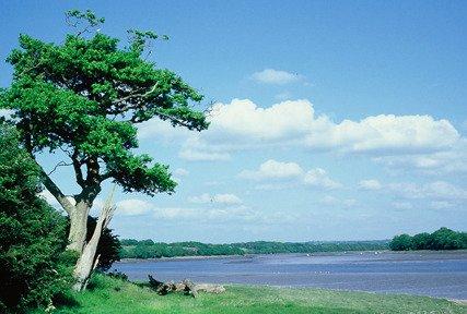 Western Cleddau river near Boulston, Wales, UK