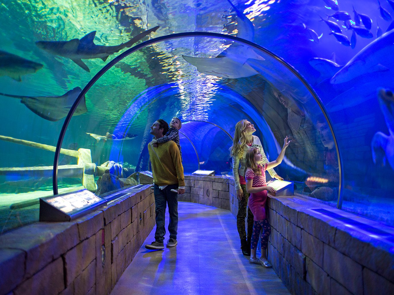 Bloomington Mn Family Vacations Trips Getaways For Families Family Vacation Critic