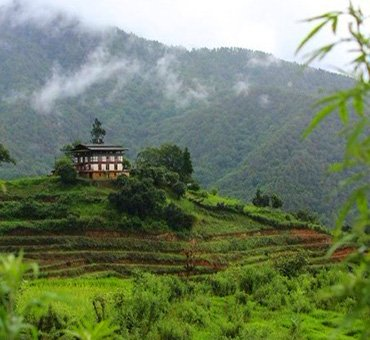 Bhutan Delight Tours and Treks