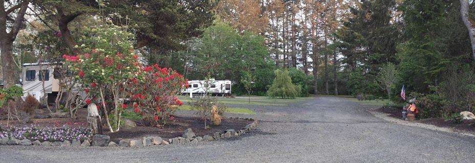 Driftwood RV Resort & Campground
