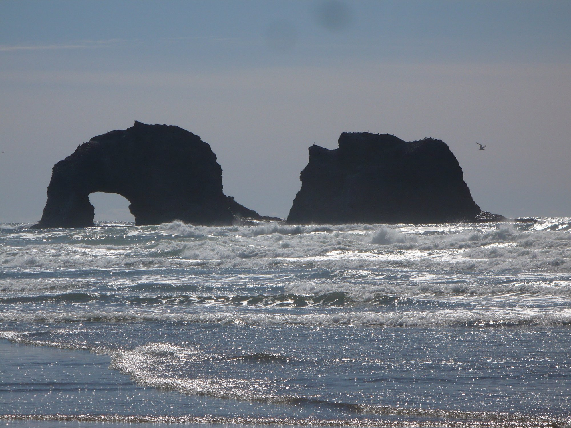 Map Of Oregon Coast%0A We search      sites to find the best hotel prices