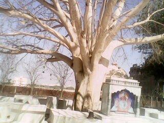 Asharamji Bapu Ashram