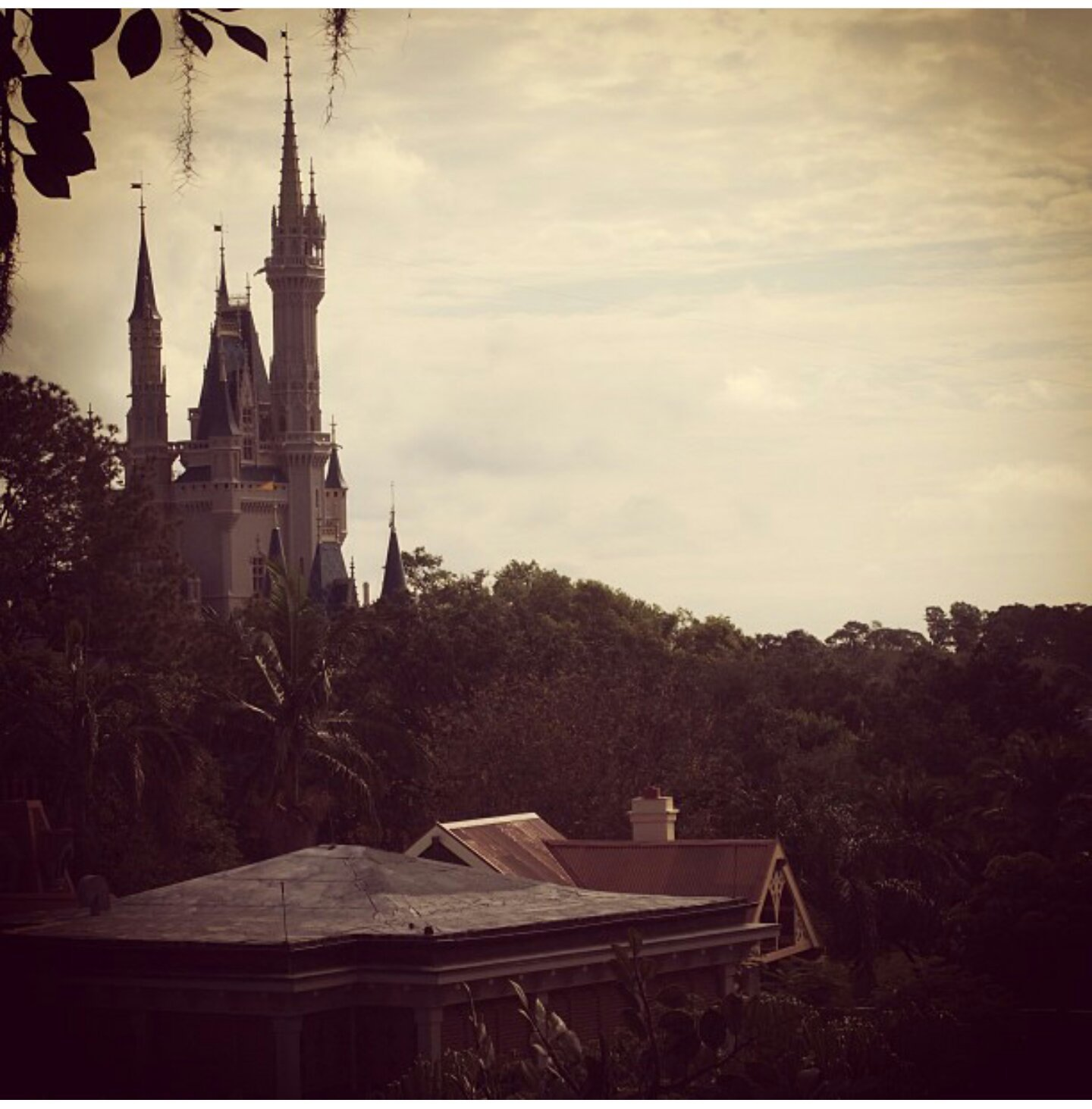 A few pictures from my trip to Disney back in 2013.