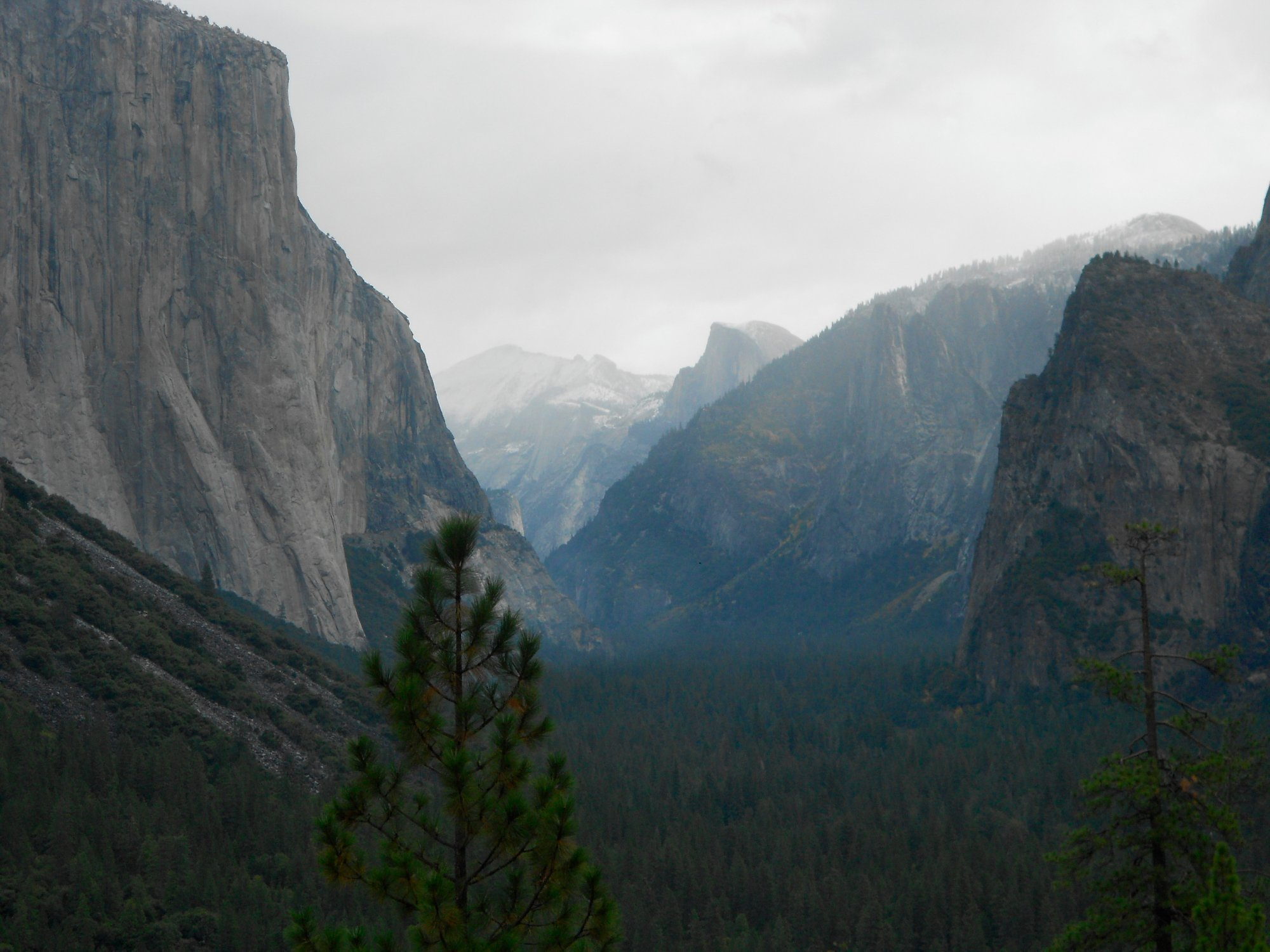 El cap and a distant Half Dome from Yosemite National Park
