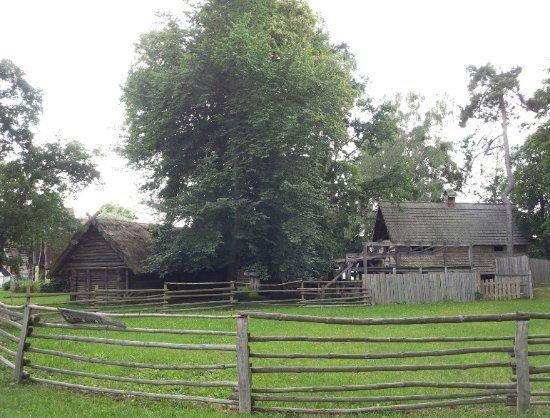 Castrum Turglowe