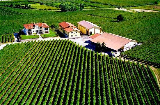 Azienda Agricola Monte del Frà