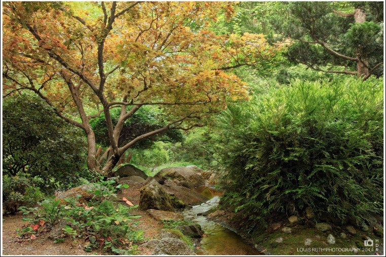 Lithia creek Ashland Oregon (Japaneese gardens)