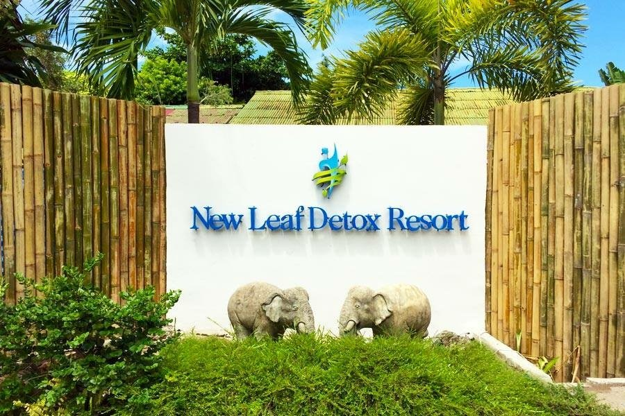 New Leaf Detox Resort