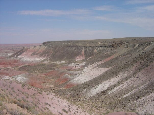 We were driving to Las Vegas and decided to stop by and see the Petrified Forest.  One of the be