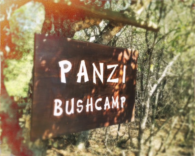 Panzi Bush Camp