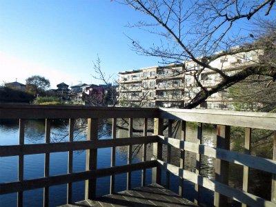 Imaizumi Meisui Sakura Park